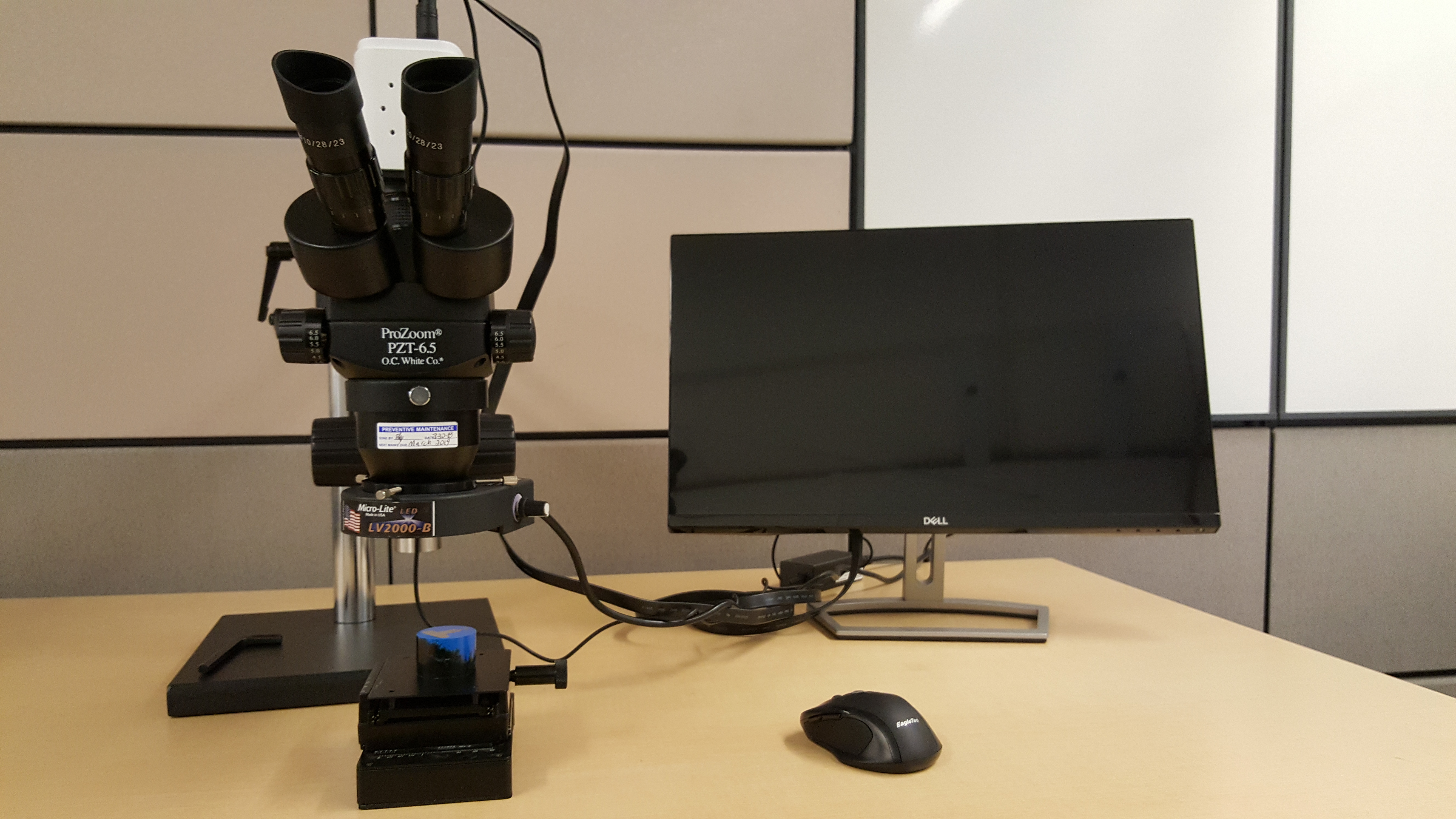 SMS OC White Stereoscope and HD Camera & Measurement System